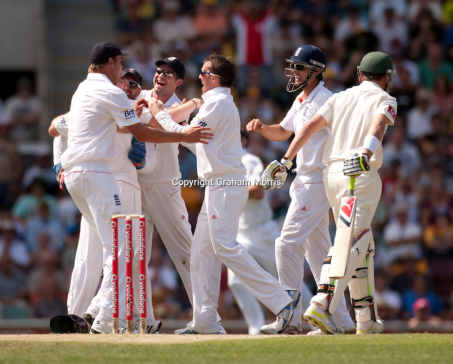 Celebrations after Marcus North is caught by Paul Collingwood off the bowling of Graeme Swann during the first Ashes Test Match between Australia and England at the Gabba, Brisbane. Photo: Graham Morris (Tel: +44(0)20 8969 4192 Email: sales@cricketpix.com) 26/11/10
