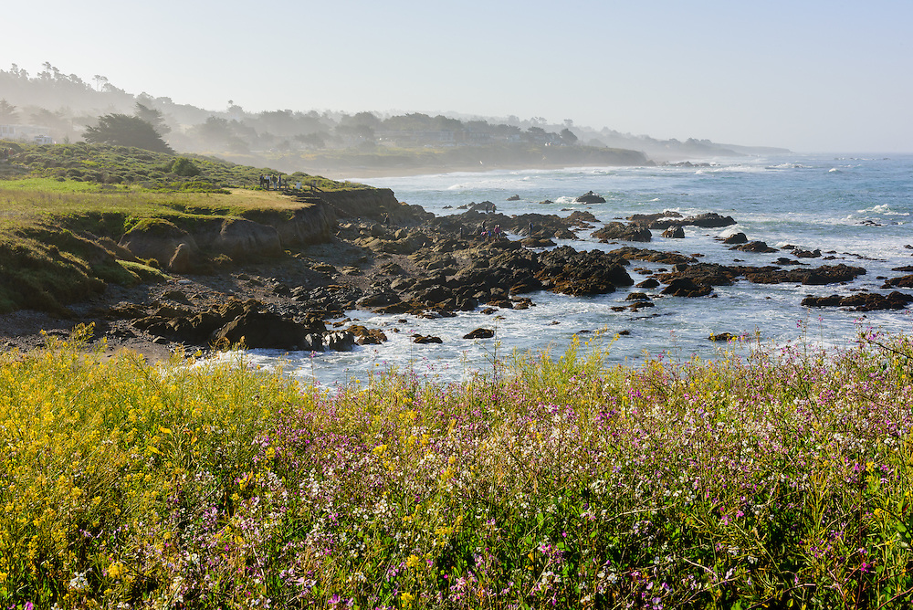 Moonstone Beach, Cambria, CA
