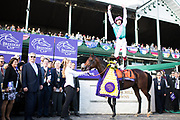 Breeders' Cup Mile (Race 8) (Turf) <br /> November 3, 2018: Expert Eye #7, ridden by Frankie Dettori, wins the Breeders' Cup Mile on Breeders' Cup World Championship Saturday at Churchill Downs on November 3, 2018 in Louisville, Kentucky