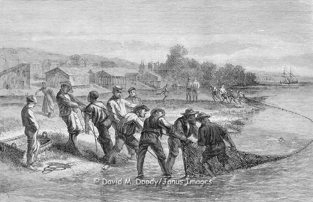 Shad fishing on the James River opposite Richmond, Virginia 1874 from Harper's Weekly.