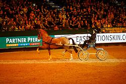 Gelderländer Stall Mekkes<br /> Leipzig - Partner Pferd 2018   <br /> Sparkassen Sport-Gala<br /> © www.sportfotos-lafrentz.de/Stefan Lafrentz