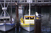 Fisherman's Wharf, San Francisco, California<br />