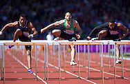 Garfield Darien FRA finishes second competing in the 110m hurdles during the IAAF  Diamond League Sainsbury's Birmingham Grand Prix at Alexander Stadium, Birmingham<br /> Picture by Alan Stanford/Focus Images Ltd +44 7915 056117<br /> 07/06/2015