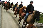 Hest i Tydal og Selbu - Horse tourism Norway