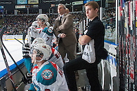 KELOWNA, CANADA - JANUARY 4: Kim Dillabaugh, goalie coach of the Kelowna Rockets stands on the bench against the Vancouver Giants on January 4, 2014 at Prospera Place in Kelowna, British Columbia, Canada.   (Photo by Marissa Baecker/Shoot the Breeze)  ***  Local Caption  ***