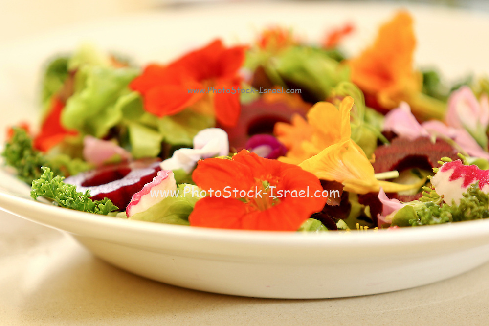 Fresh vegetable salad decorated with edible monk cress flowers. This image has a restriction for licensing in Israel