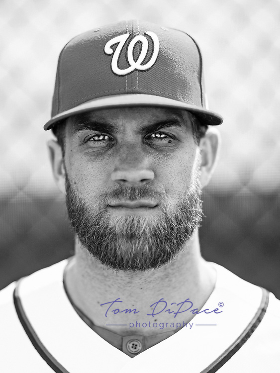 Washington Nationals Bryce Harper poses for a portrait on 2.19.17<br /> ( Photo/Tom DiPace)