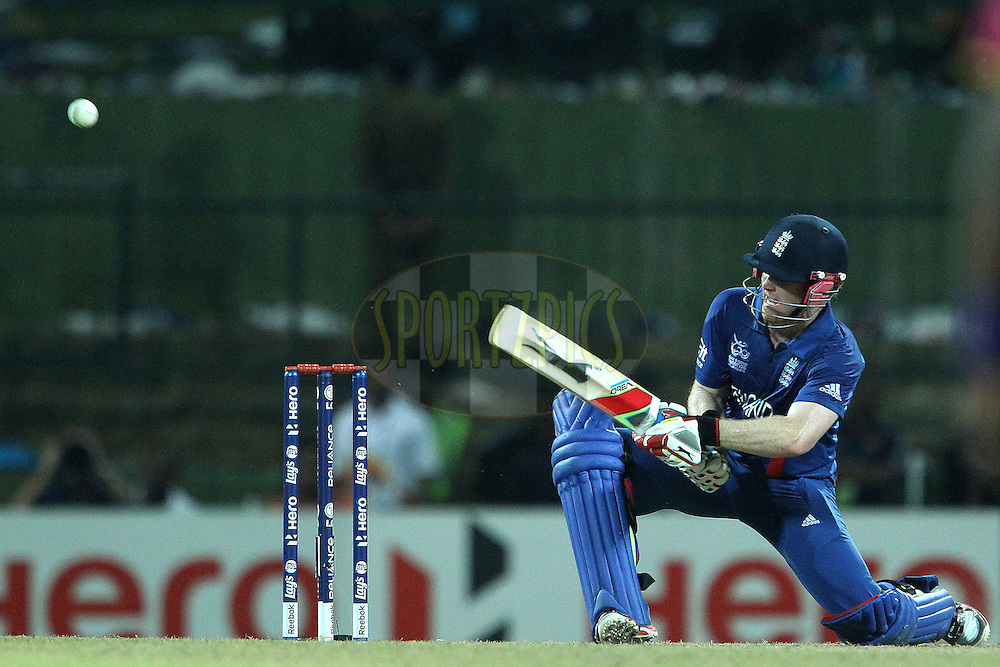 Eoin Morgan of England  lifts the ball over the top during the ICC World Twenty20 Super 8s match between England and The West Indies held at the  Pallekele Stadium in Kandy, Sri Lanka on the 27th September 2012..Photo by Ron Gaunt/SPORTZPICS