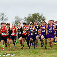 10-11-14 Berryville Cross Country Meet ( Carroll County Back 40 )