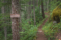 Trail sign Glacier peak Wilderness, North Cascades Washington