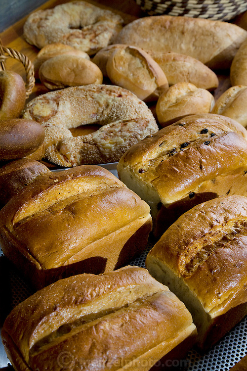 Some of the bread produced by the bakery where the Bread Queen works: Robina Weiser-Linnartz, a master baker and confectioner in Cologne, Germany. (Robina Weiser-Linnartz is featured in the book What I Eat: Around the World in 80 Diets)