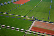 Nederland, Noord-Holland, Schermer, 28-04-2010; Polder De Schermer met windmolen omringd door bloembollenvelden met tulpen en koeien in het weiland: lente in Holland..Windmill  in the Schermer polder  surrounded by bulb fields and cows in the green pastures: Spring in Holland.luchtfoto (toeslag), aerial photo (additional fee required).foto/photo Siebe Swart
