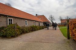 Van Gisbergen Isabel, Van Gisbergen Wil, Ambria, , Escobar, NED<br /> Fokkerij Isabel en Wil van Gisbergen<br /> © Hippo Foto - Dirk Caremans<br /> 20/11/2018