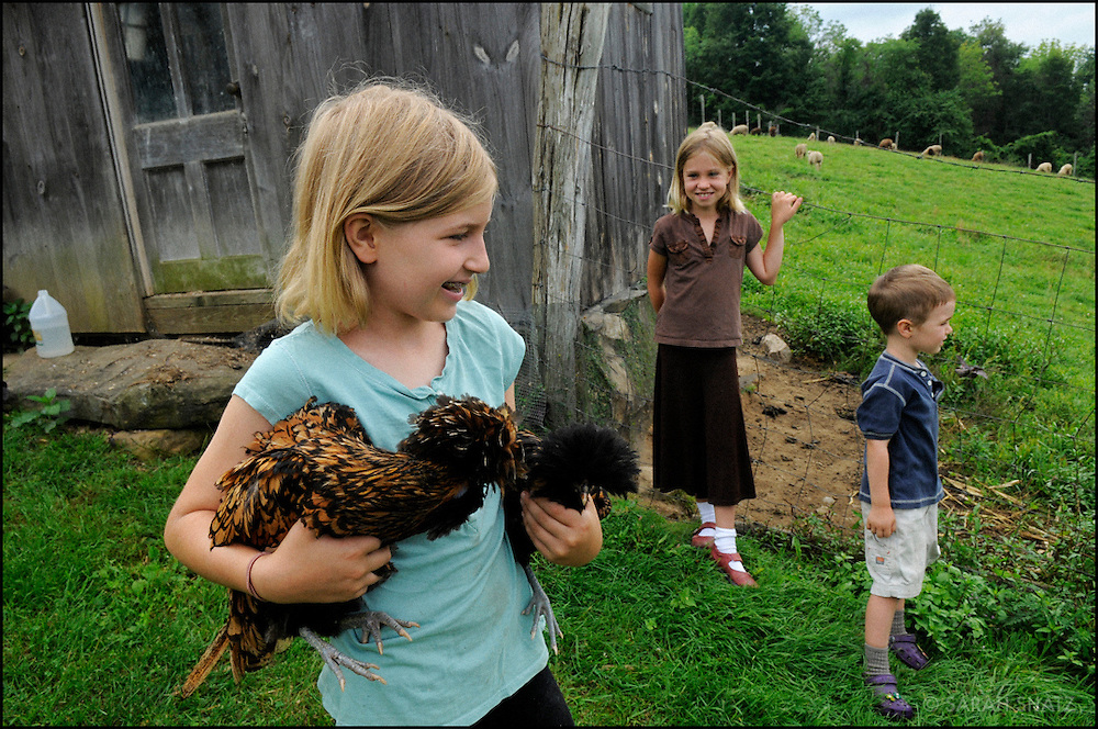Girl with chickens on a farm