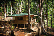 Near complete wooden jungle cabin dramatically set in primary and secondary rain forest in La Zona Sur of Costa Rica