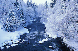 Fresh snow and the Connecticut River between First and Second Connecticut Lakes.  Northern Forest.  Pittsburg, NH