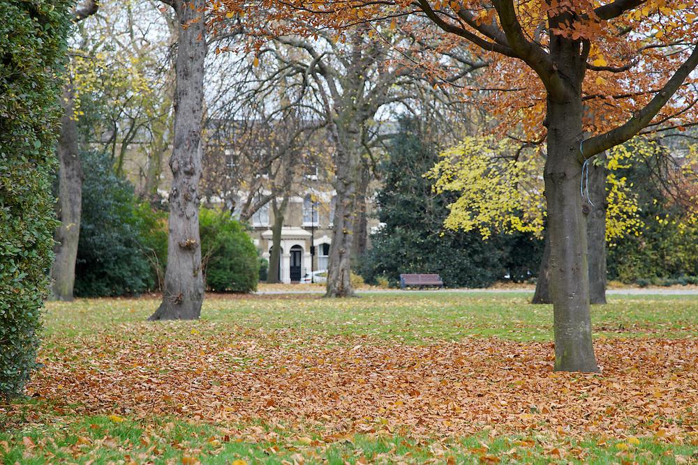 Victoria Park, Hackney, London CREDIT: Vanessa Berberian for The Wall Street Journal<br /> HACKNEY-Lana Wrightman