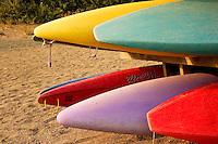Colourful kayaks at Strathcona Park Lodge, Vancouver Island BC