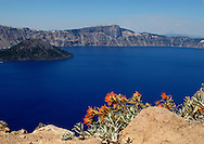 Crater Lake National Park, Oregon, Wizard Island