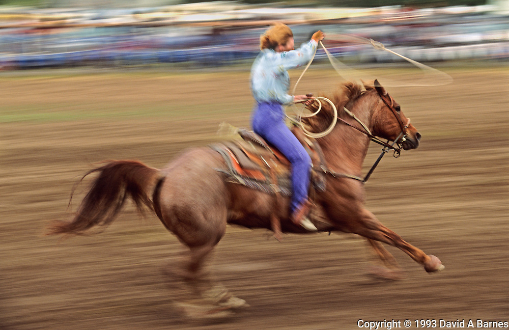 Woman rodeo rider, calf roping, USA