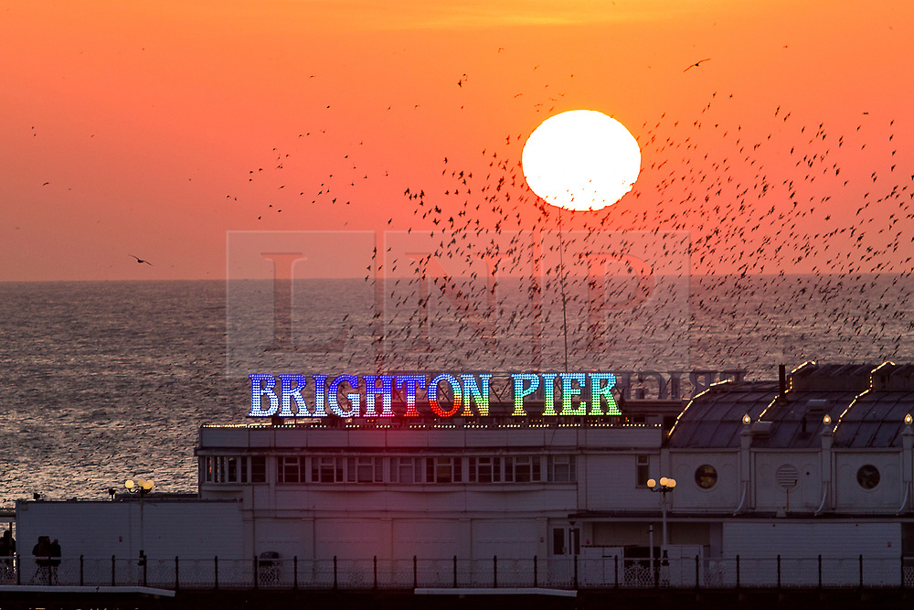 © Licensed to London News Pictures. 24/02/2018. Brighton, UK. A golden sun set behind the Palace Pier in Brighton and Hove, today Saturday 24th February 2018. Photo credit: Hugo Michiels/LNP