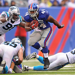 New York Giants running back Ahmad Bradshaw (44) escapes from Carolina Panthers defensive end Charles Johnson (95) during second half NFL action in the New York Giants' 31-18 victory over the Carolina Panthers at New Meadowlands Stadium in East Rutherford, New Jersey.