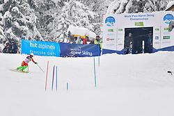 WANG Qingyun, LW6/8-2, CHN, Women's Slalom at the WPAS_2019 Alpine Skiing World Championships, Kranjska Gora, Slovenia