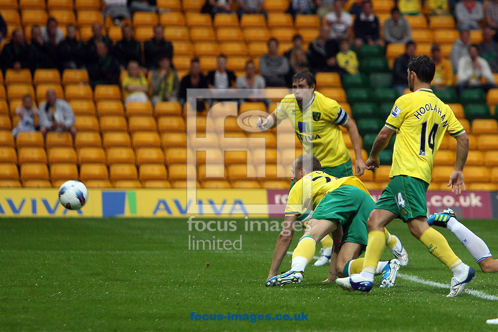 Ritchie De Laet of Norwich opens the scoring during a pre season friendly at Carrow Road stadium, Norwich...Picture by Paul Chesterton/Focus Images Ltd.  07904 640267.3/8/11