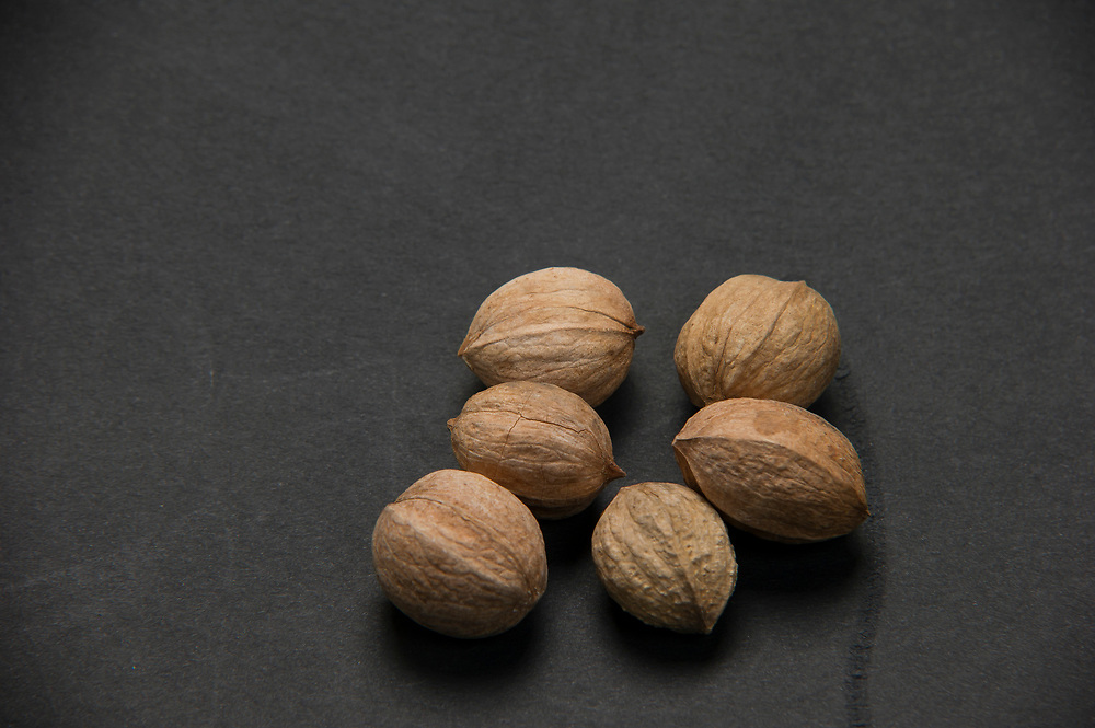 Nut identification series for Bailey Norwood