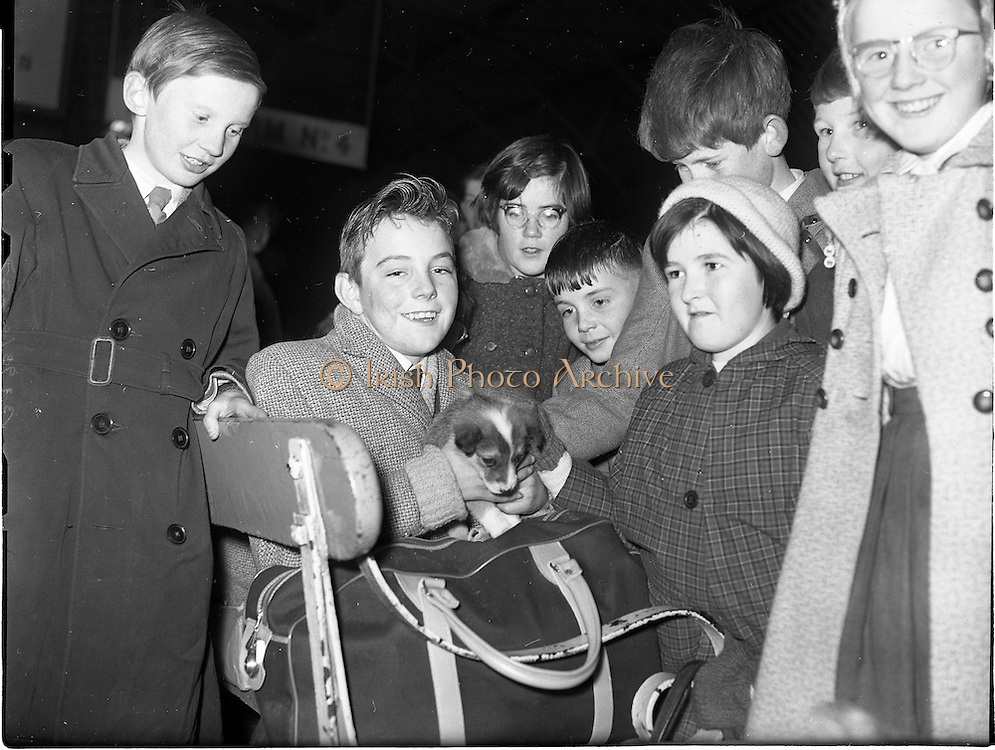 05/12/1961<br /> 12/05/1961<br /> 05 December 1961<br /> Gael Linn - children returning from the Gaeltacht at Westland Row (Pearse) Station. Note the puppy dog in the middle.