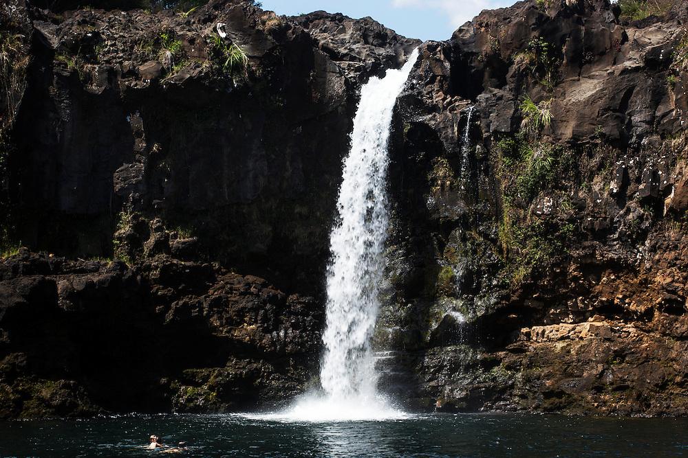 Eagles nest, Wailuku River, Hilo, Big Island, Hawaii.