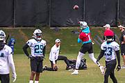 Carolina Panthers quarterback Cam Newton(1) passes the ball during minicamp at Bank of America Stadium, Thursday, June 13, 2019, in Charlotte, NC. (Brian Villanueva/Image of Sport)
