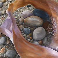 One single conch shell comes to life in this unusual macro view.  Slip and slide along its voluptuous curves, and see a shell from a new perspective! <br />