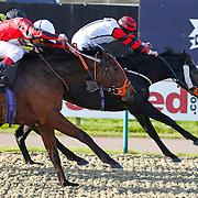 Sheacheval and Liam Jones winning the11.50