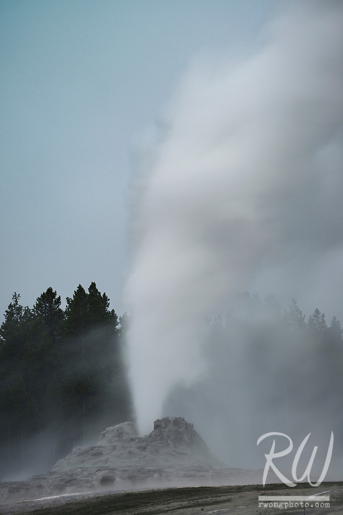 Castle Geyser Erupting at Dawn, Yellowstone National Park, Wyoming