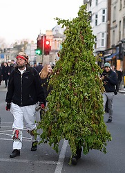 © London News Pictures. 01/05/2016. Oxford, UK. A man dressed as a tree walks along side a Morris Man as Oxford University students and members of the public celebrate May Day in the early hours of the morning near Magdalen Bridge in Oxford, Oxfordshire. This year people were again prevented from jumping from the bridge in to the water due to serious injuries sustained at a previous years event . Photo credit: Ben Cawthra/LNP