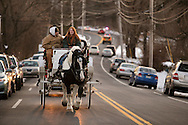 Sugar Loaf, NY -  A woman drives a horse drawn carriage down the street during a holiday celebration on Dec. 12, 2009.