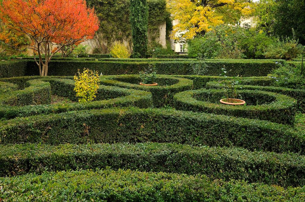 France, Languedoc Roussillon, Gard (30), Uzège, Uzès, jardin de buis de Mme Devèze