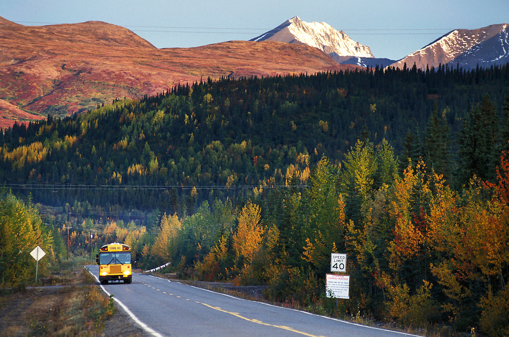 School Bus, Cantwell, Alaska, USA