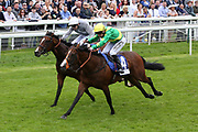 RECON MISSION (4) ridden by Rob Winston and trained by Tony Carroll winning The Pavers Foundation Catherine Memorial Sprint over 6f (£100,000)   during the MacMillan Charity Raceday held at York Racecourse, York, United Kingdom on 15 June 2019.