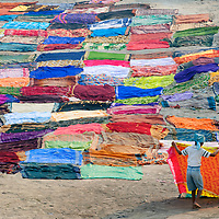 Laying freshly washed saris out to dry in Agra, India
