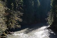 Elwah River. Olympic National Park, WA