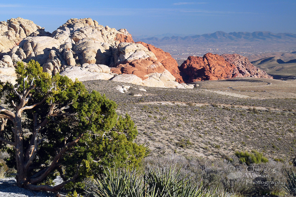 "Southern neighborhoods of Las Vegas sprawl across the distant background of this horizontal image of the white, red, and pink sandstone hills that are distinctive features of Red Rock Canyon National Conservation Area just west of ""Sin City."""