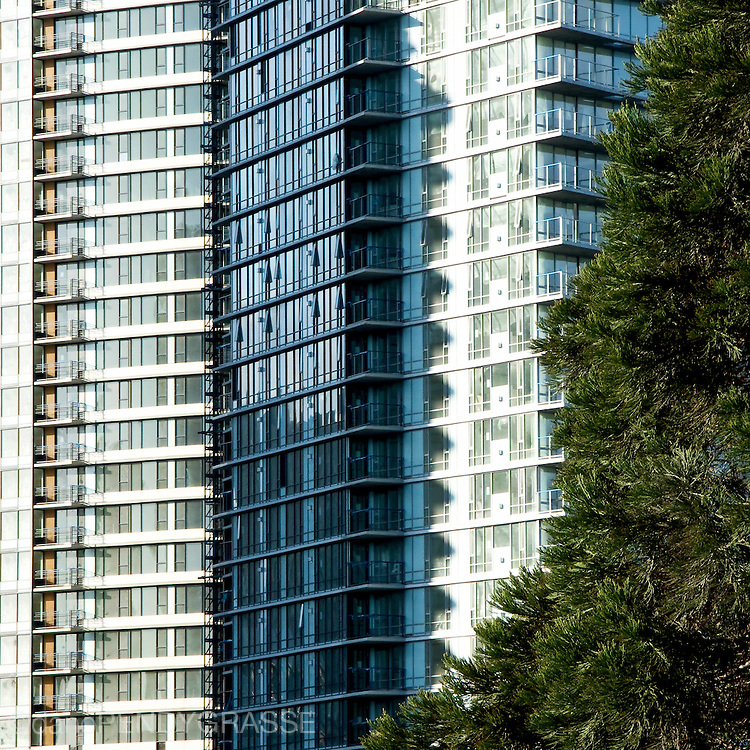 New buildings sprout up faster than the trees around Vancouver's False Creek, home of 2010 Olympic Village.