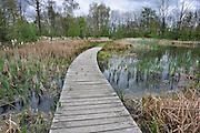 Nederland, Ubbergen, 25-4-2012Poel, paddenpoel aan de rand van de Ooijpolder.Het is onderdeel van een route voor wandelaars en recreanten.Foto: Flip Franssen/Hollandse Hoogte