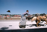 Horse and chariot race with hat floating away