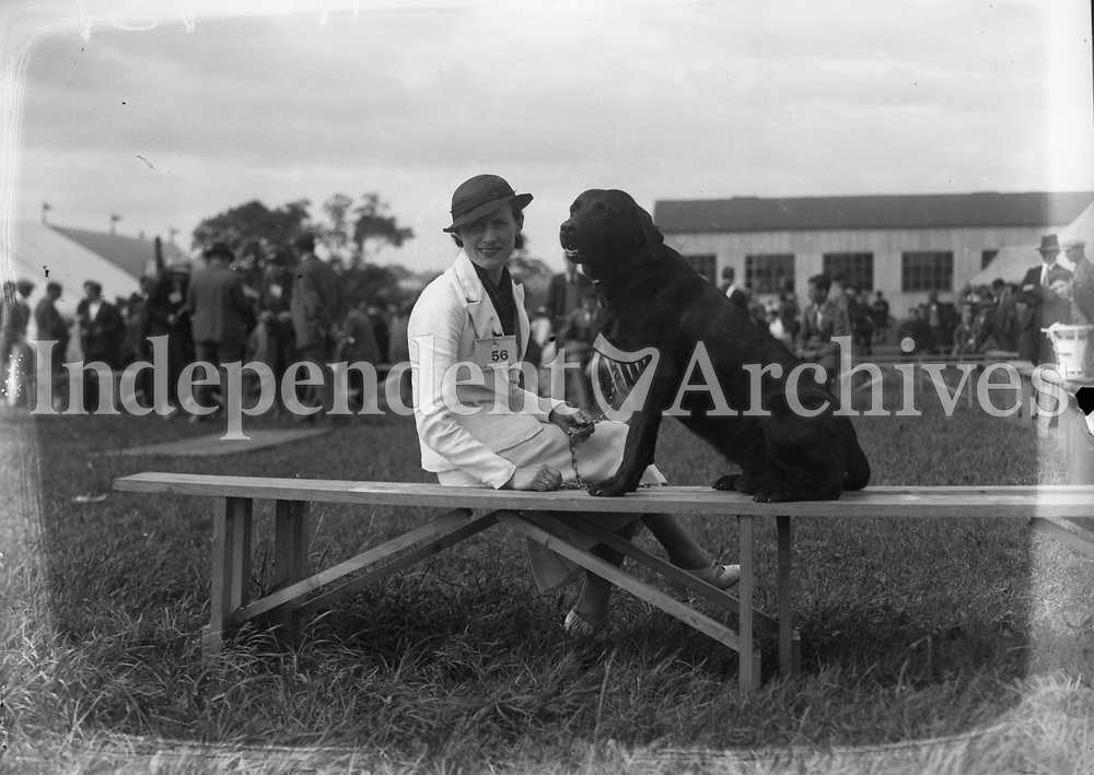 H2931 Horse Show - Limerick. Dog and woman. (n.d.). 1935 (Part of the Independent Ireland Newspapers/NLI Collection)