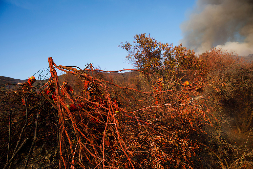 Inmate firefighters clear brush to build a line while battling the Wildomar wildfire in the Cleveland National Forest on Thursday, October 26, 2017 in Wildomar, Calif. The fire started after a motorcycle crashed into a tree. © 2017 Patrick T Fallon