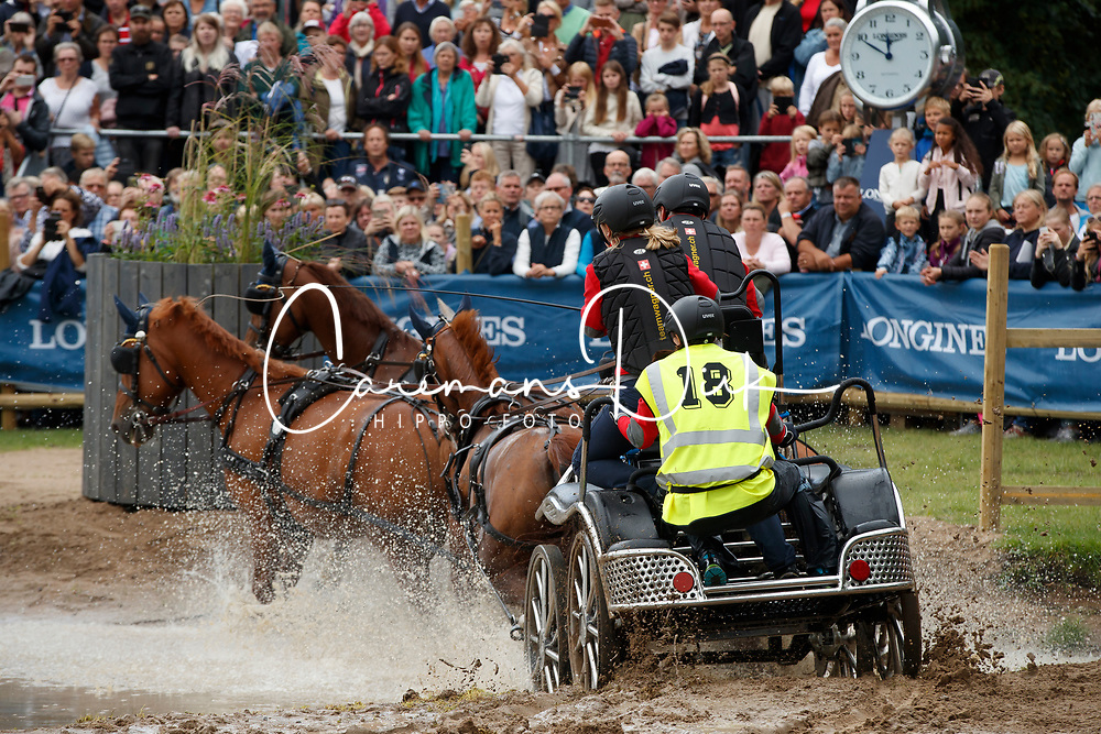 Wagner Martin, SUI, Cato V, Finity 2, Korina, Lucky XIX CH, Ninjo CH<br /> FEI European Driving Championships - Goteborg 2017 <br /> &copy; Hippo Foto - Dirk Caremans<br /> 26/08/2017,