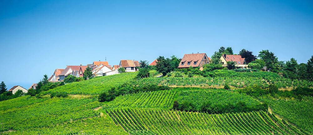 The village of Zellenberg, Alsace, France - surrounded by vineyards.<br /> <br /> (c) Andrew Wilson | Edinburgh Elite media